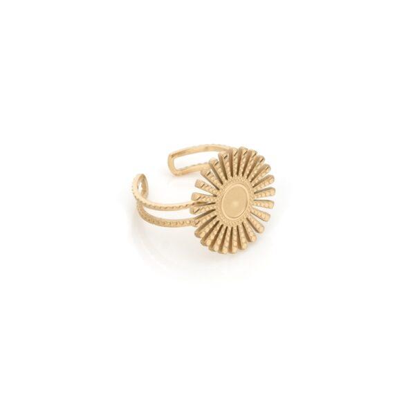 Anelem aço dourado ajustável circular
